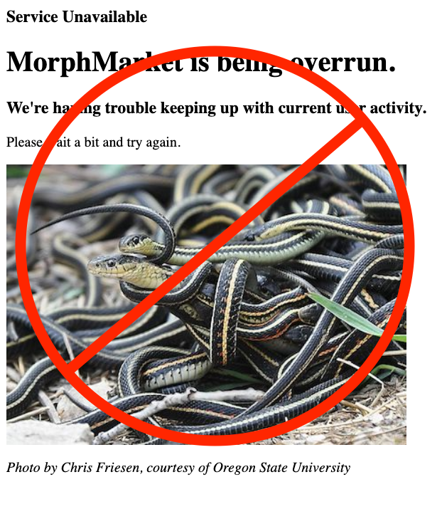 "Website Performance & Eradication of ""Garter Snakes"""