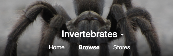 Inverts Categories Added